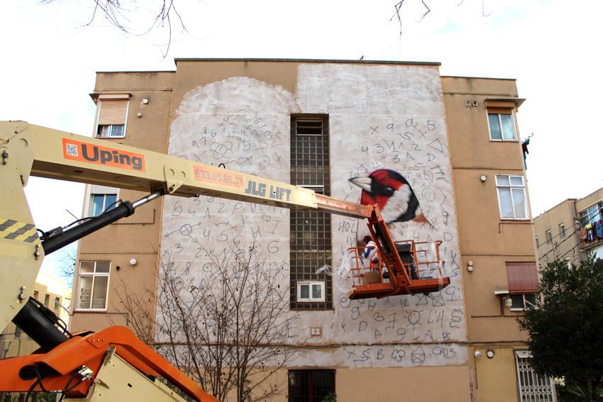 Mural de les Aus_Des 2020_Irene Lopez 1