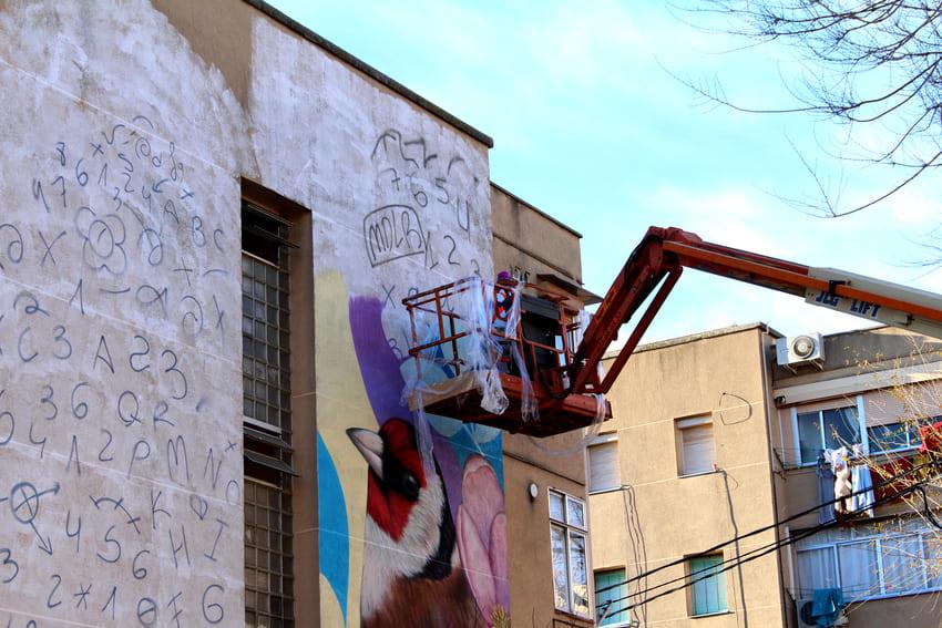 Mural de les Aus_Des 2020_Irene Lopez 5