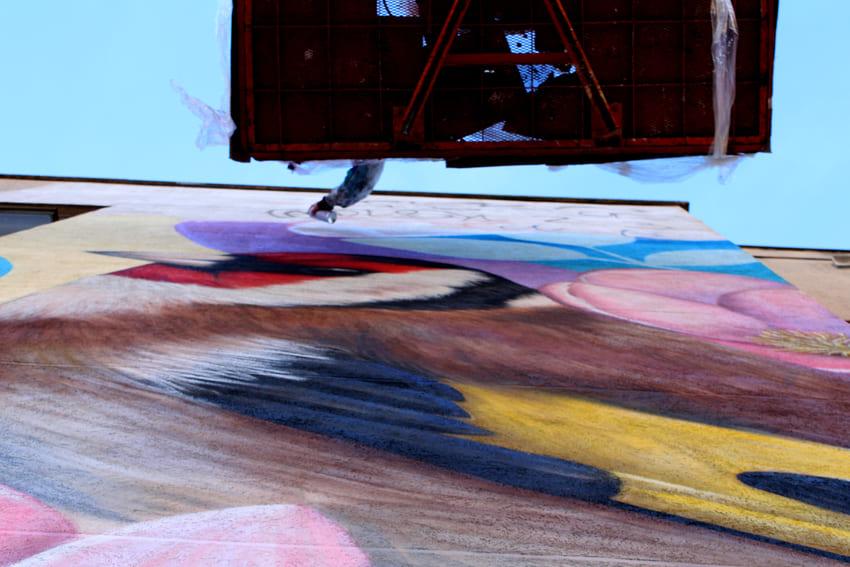 Mural de les Aus_Des 2020_Irene Lopez 6