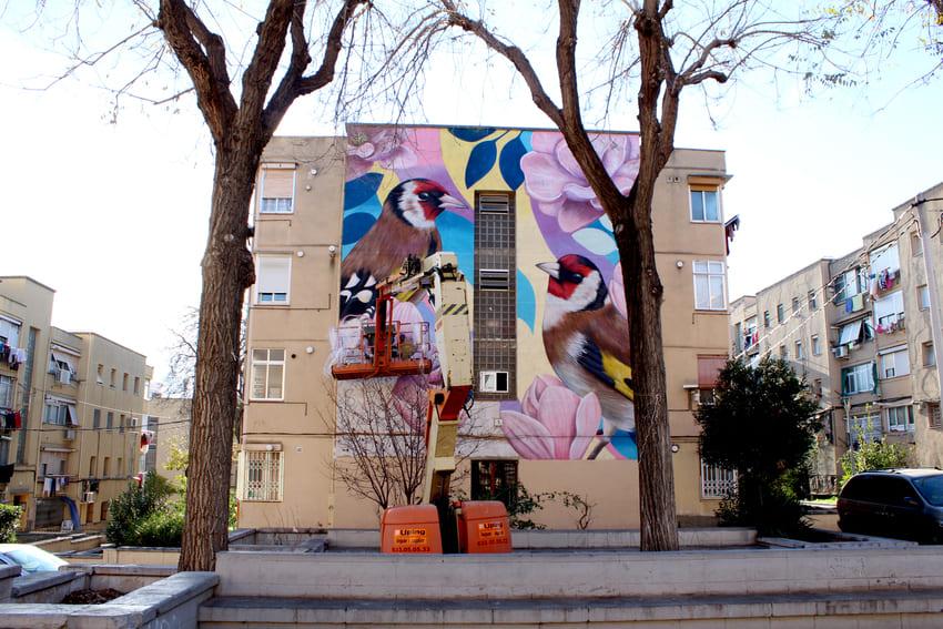 Mural de les Aus_Des 2020_Irene Lopez 9